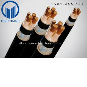Cáp 2 lõi – hạ thế(Cu/XLPE/PVC)