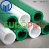 Ống nóng PPR Europipe PN20